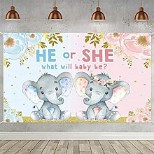 He or She Baby Shower Party Banner Elefante Sesso