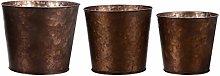 Holibanna 3Pcs Mini Fiore di Ferro Vaso di Fiori