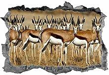 HQQPA Adesivo Effetto 3D Adesivo murale decorativo