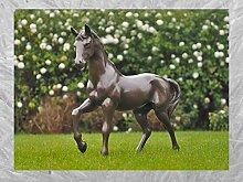IDYL - Scultura in bronzo a forma di cavallo 81 cm