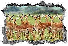 Impala, arte della parete, 3d, animali,