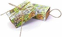 JZK 50 x Mappa Verde scatolina Scatola