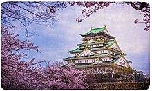 Kanaite Osaka Castle, Giappone, con Fiori di