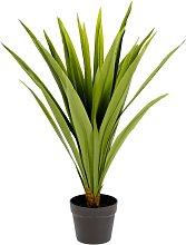 Kave Home - Pianta Yucca artificiale Zelena