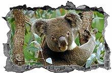Koala, adesivo, 3D, animali, arte della parete,