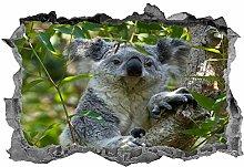 Koala, adesivo, animali, arte della parete,