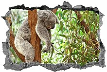 Koala, arte della parete, 3D, animali, adesivo,