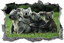Koala, arte della parete, animali, adesivo,