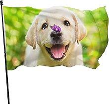 Labrador, Bandiera da giardino per prato Bandiera