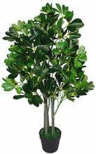 Leaf Design UK, Schefflera Arboricola Nana,