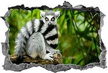 Lemure, 3d, arte della parete, adesivo, animali,