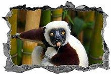 Lemure, 3D, Arte della parete, Animali, Adesivo,