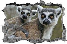 Lemure, adesivo, 3d, animali, arte della parete,