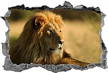 Leone, 3D, arte della parete, animali, adesivo,