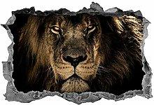 Leone, adesivo, animali, arte della parete, 3d,