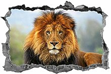 Leone, adesivo, animali, arte della parete,