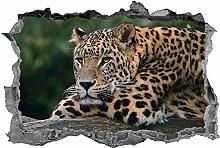 Leopardo, 3D, Arte della parete, Safari, Animali,