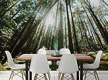 Lovemq Carta Da Parati Murale 3D Sunshine Forest