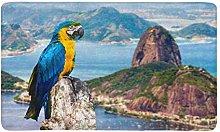 Macaw Blu e Giallo a Rio De Janeiro Brasile