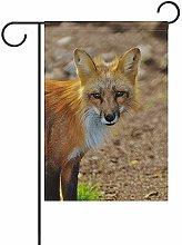 Not Applicable Fauna Selvatica Fox Stand Bandiera