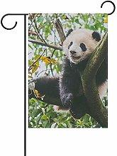 Not Applicable Panda Gigante Che Gioca
