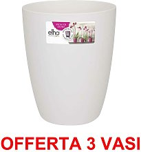 Offerta 3 Vaso Orchidee Brussels Orchid High