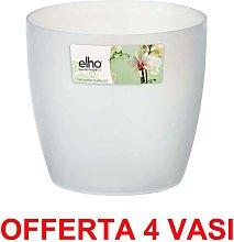 OFFERTA 4 VASO ORCHIDEE BRUSSELS ORCHID 12,5CM