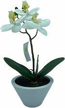 Orchidea Artificiale in Vaso Bianco, Piantina