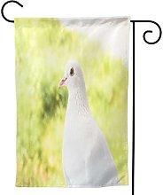 Ornamenti da giardino bandiera bianca fine colomba