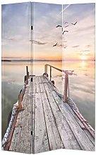 OUSEE Paravento Pieghevole 120x170 cm Stampa Lago