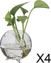 P Prettyia 4X Vaso Idroponico di Vetro Vaso per