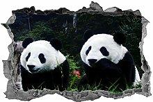 Panda, adesivo, orso panda, animali, arte della