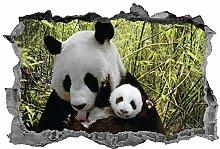 Panda, Wall Art, Panda Bear, 3D, Animali, Adesivo,
