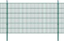 Pannelli di recinzione 2D giardino con paletti