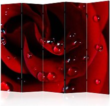 Paravento Red rose with water drops II cm 225x172
