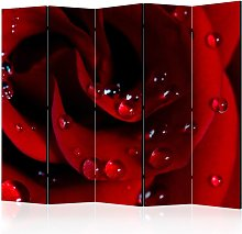 Paravento - Red rose with water drops II [Room