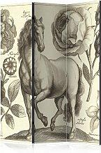 Paravento separé - Horse [Room Dividers] | 135x172