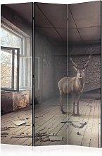 Paravento separé - Lost [Room Dividers] | 135x172