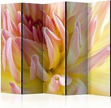 Paravento separé - Pastel colored dahlia flower