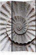 Paravento Shell Room Dividers cm 135x172 - Artgeist
