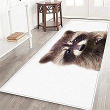 PATINISA Tappeto cucina,Raccoon-Colorato su