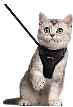 Perla rara stoviglie per gatti attivi con busto al