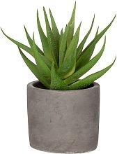Pianta artificiale con vaso in cemento grigio