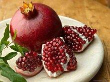 Pianta di melograno wonderful piante da frutto in