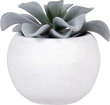 Pianta grassa artificiale con vaso bianco