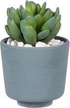 Pianta grassa artificiale con vaso blu