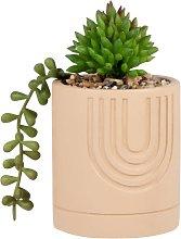 Pianta grassa artificiale con vaso in cemento rosa