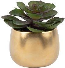 Pianta grassa artificiale con vaso in ceramica