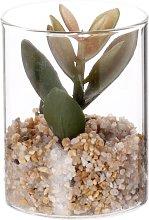 Pianta grassa artificiale con vaso in vetro