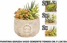 PIANTA GRASSA VASO CEMENTO TONDO CM.11,5X15h